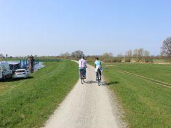 Elbe-Radweg