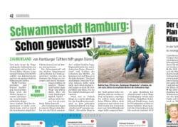 Schwammstadt Hamburg
