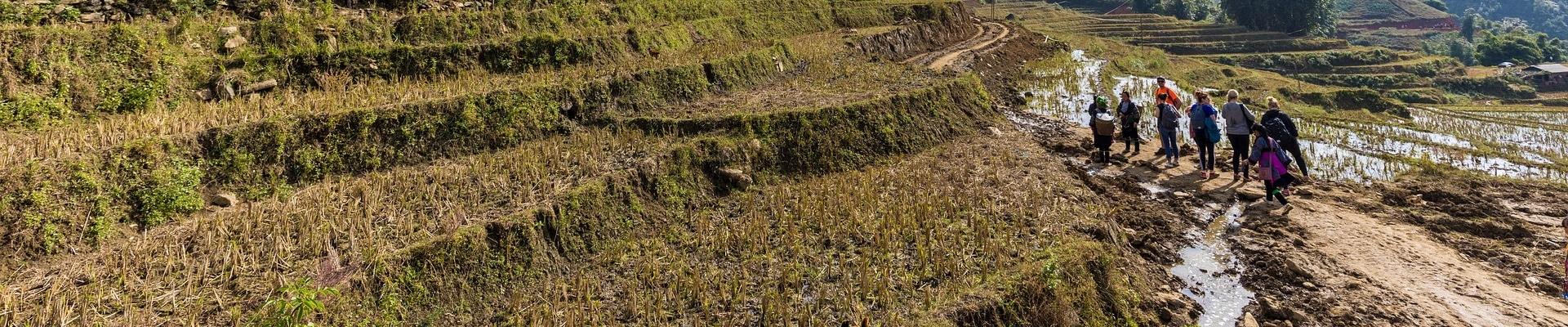 HanseGrand Vietnam Marsh Roads