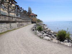 Wegedecke Uferweg Bodensee